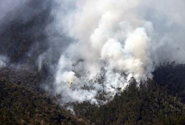 Bomberos forestales trabajan en el control de incendio en Mata Grande, San José de las Matas
