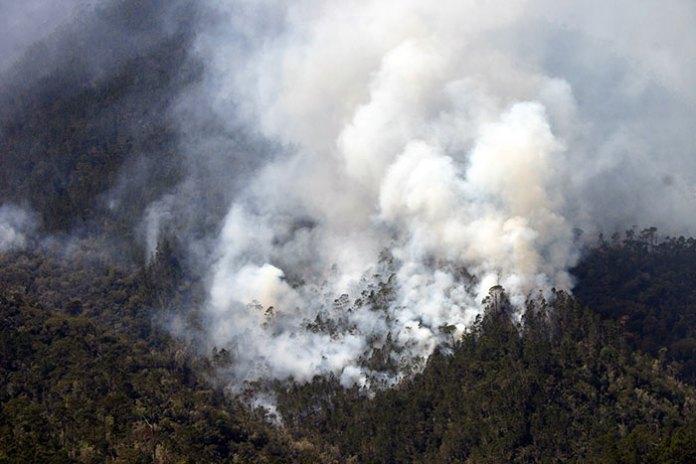 Medio Ambiente no dice que extensión es afectada por el incendio forestal en la comunidad de Mata Grande, en San José de las Matas.