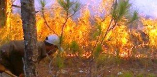 Medio Ambiente dice que el fuego en Valle Nuevo está bajo control.