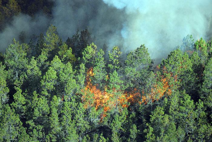 Fuego en Valle Nuevo sigue sin control