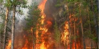 Imagen de archivo del reciente incendio en Valle Nuevo, Constanza