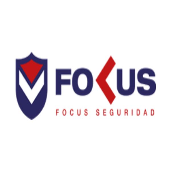GRUPO FOCUS