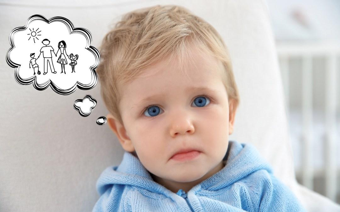 Djetetovo pravo na oca i majku ili deset razloga protiv tzv. prava homoseksualaca na posvajanje djece
