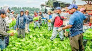Autosuffisance, avec armée, travailleurs temporaires et travailleurs illégaux
