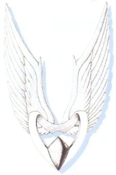 Angel Wings Equipment Final Fantasy Wiki FANDOM