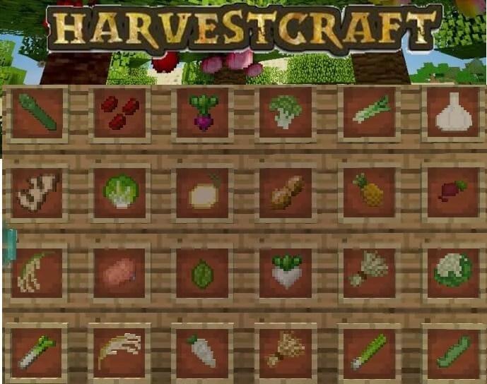 Harvest Coleslaw Recipe