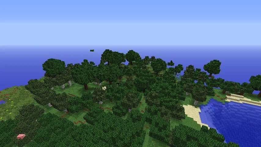 Minecraft Plains Forest