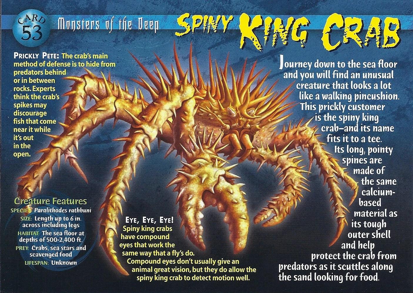 Spiny King Crab Weird N Wild Creatures Wiki FANDOM