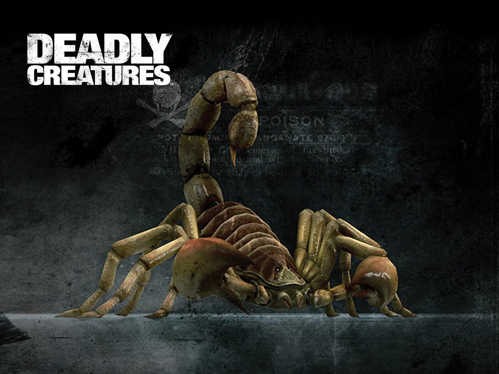 Deadly Scorpion Creature