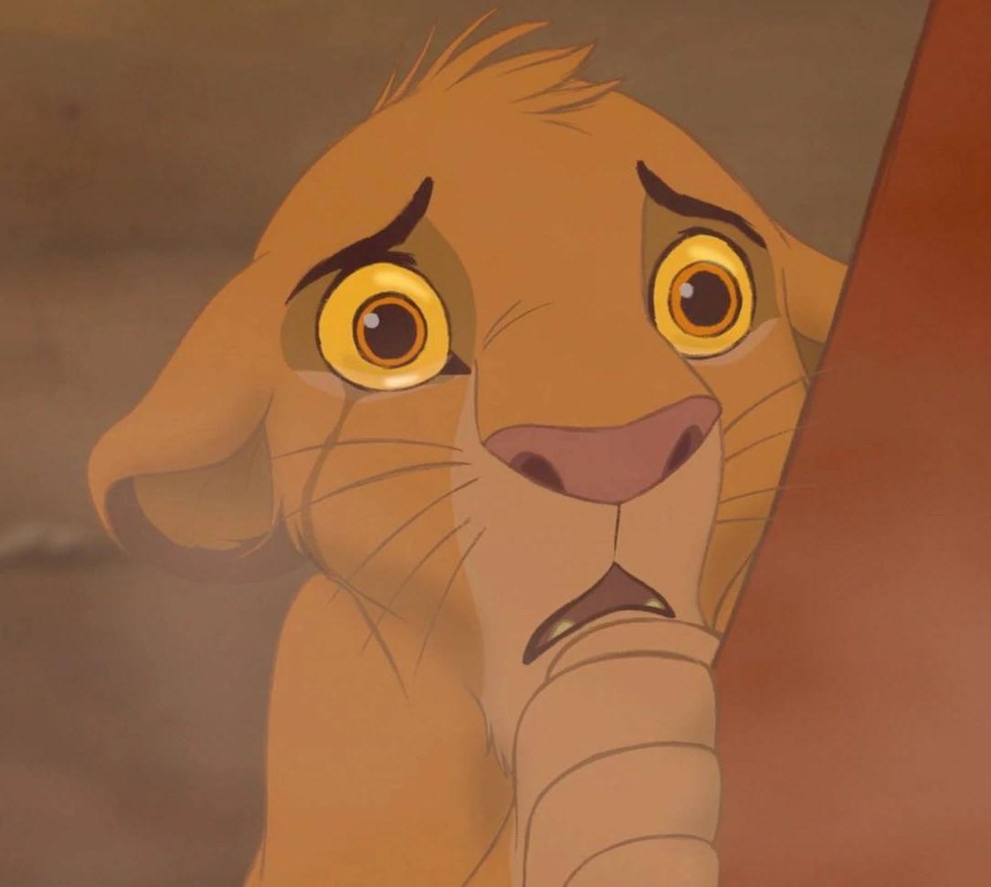 Timon King Pumbaa Lion Crying And