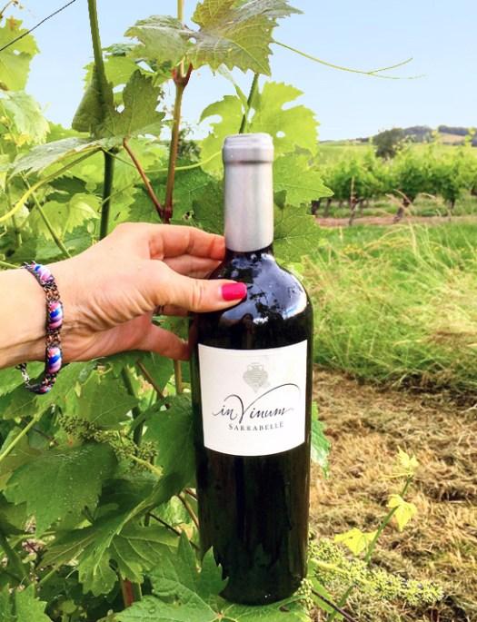 In Vinum - Domaine Sarrabelle - Vignobles d'Occitanie