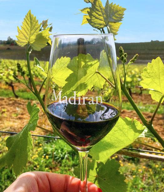 Le Tannat et les vins de Madiran
