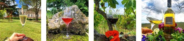 Vignobles d'Occitanie - Opulence et typicité des vins d'Occitanie