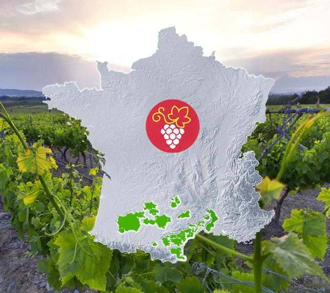 Vignobles d'Occitanie - Vins, vignes et vignerons du Sud-ouest et du Languedoc Roussillon