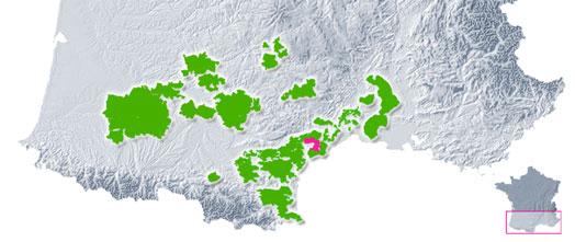 Vins des Côtes de Thongue