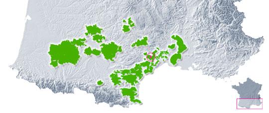 Vignoble Languedoc - Montpeyroux