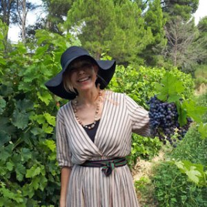 Vineyards of Occitanie - Visit the vineyards