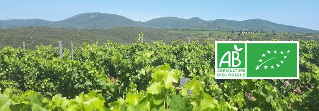 Certified organic vineyards in Occitania - Mas Onésime - Faugères