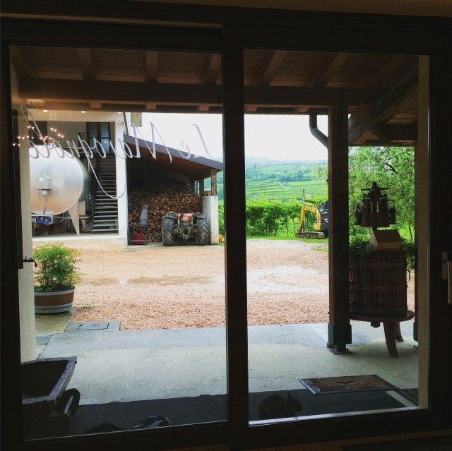 Le Marognole tasting room view