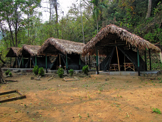 Tourism must sustainably benefit communities and wildlife, suggests Samrakshan, whose community-based camping facilities in two villages in the Balpakram-Baghmara landscape have come to be recognised as examples for others to emulate.