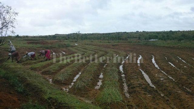 Farming in ProtoVillage