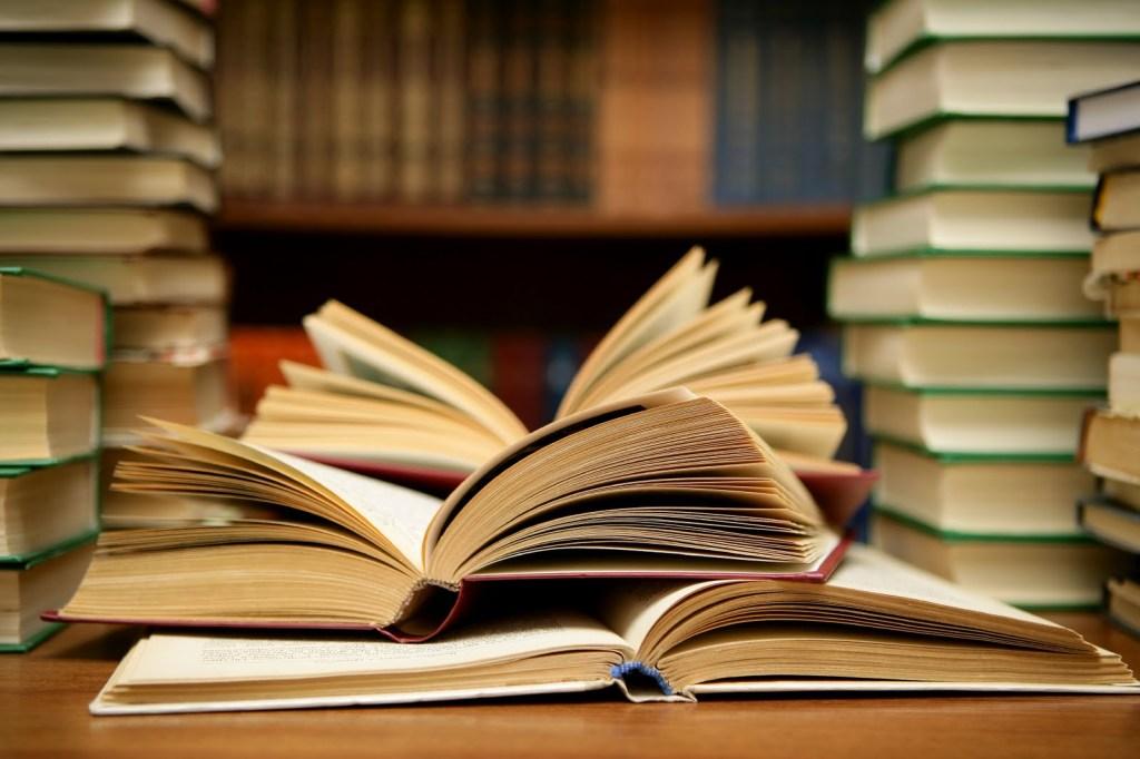 vika raskina - open book