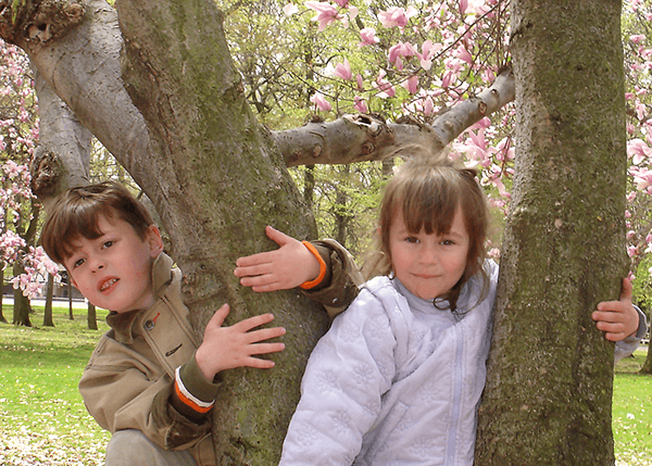 children on the tree