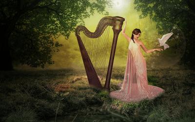 Музыкальная школа: выбираем инструмент и учителя