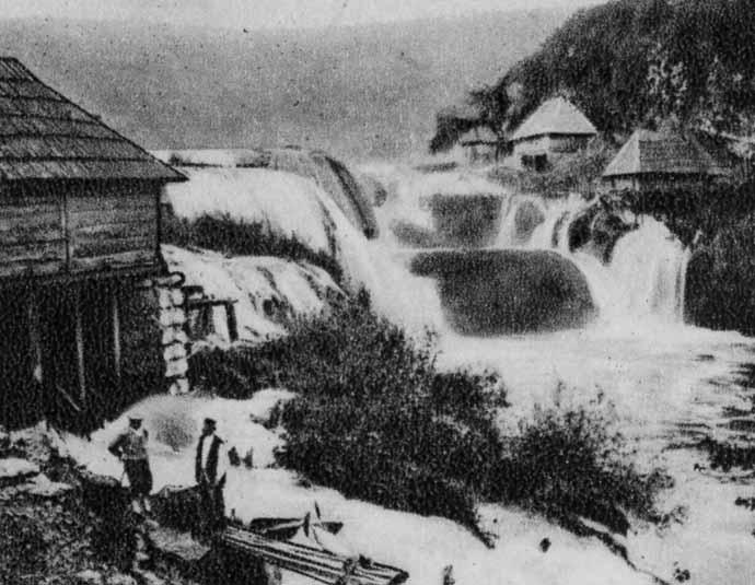 strbacki-buk-19-stoljece 2