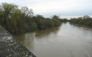 A view of the Severn from Maisemore Bridge (from the photograph.org/uk project