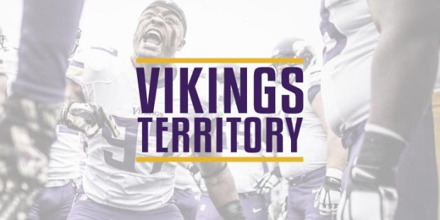 About Vikings Territory