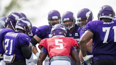 2016 Minnesota Vikings season