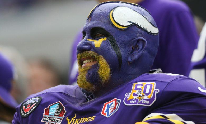 Vikings Fan