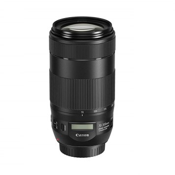 Canon 70-300mm Lens Pic1 (800 x 800)