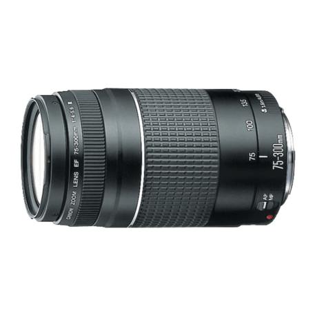 Canon EF 75-300 mm f4-5.6 III Telephoto Zoom Lens for Canon SLR Cameras image 1