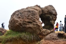 a gorilla rock