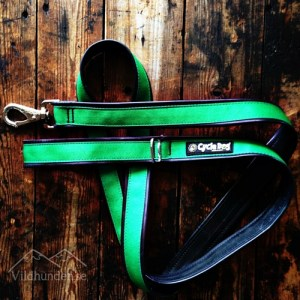 Cycle dog Solid Green Koppel