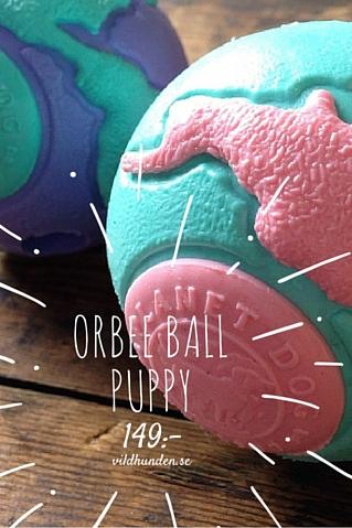 bild på Planet Dog Orbee Ball Puppy Turkos/Rosa