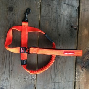 EZYDOG Koppel Zero Shock Orange1