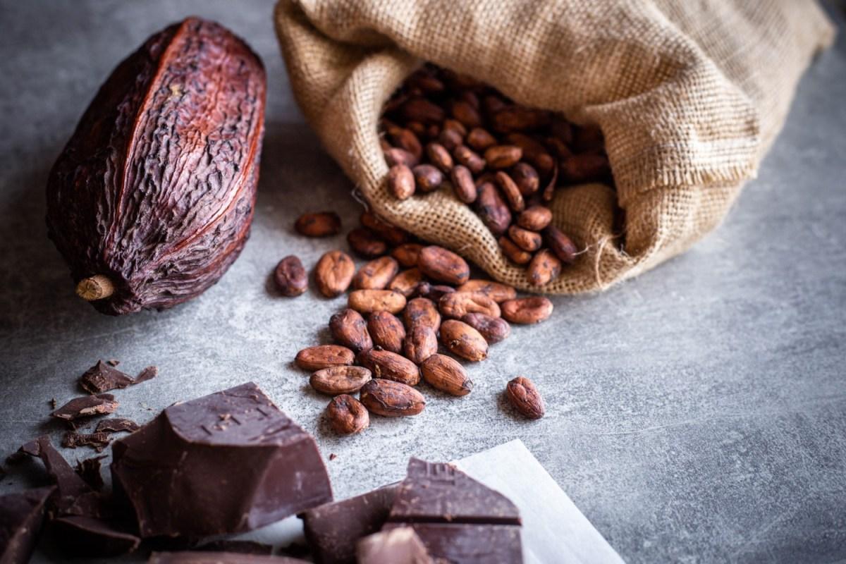 Chocolat_-16