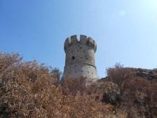 Tour génoise de Capanella