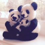 Image of Felted Panda Bear Art by Chris Boyer