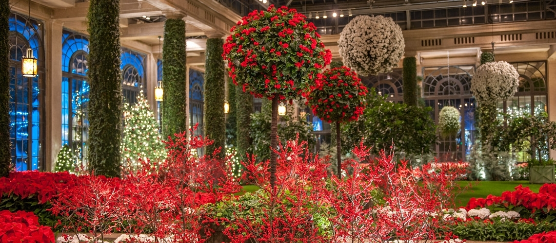 Greenwood Gardens Hosts Trip To A Magical Holiday
