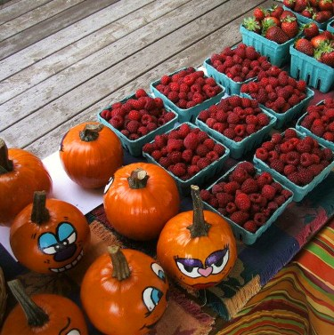 Fresh local pumpkins and berries