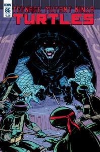Teenage Mutant Ninja Turtles #85 , IDW