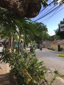 Street - Villa Laura Las Terrenas