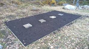 Vegetable patch 1
