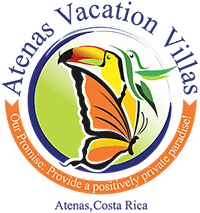 costa rica vacation rental logo design
