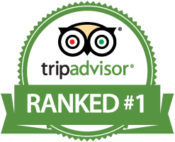 trip advisor reviews recommendation villa marketers vacation rental marketing