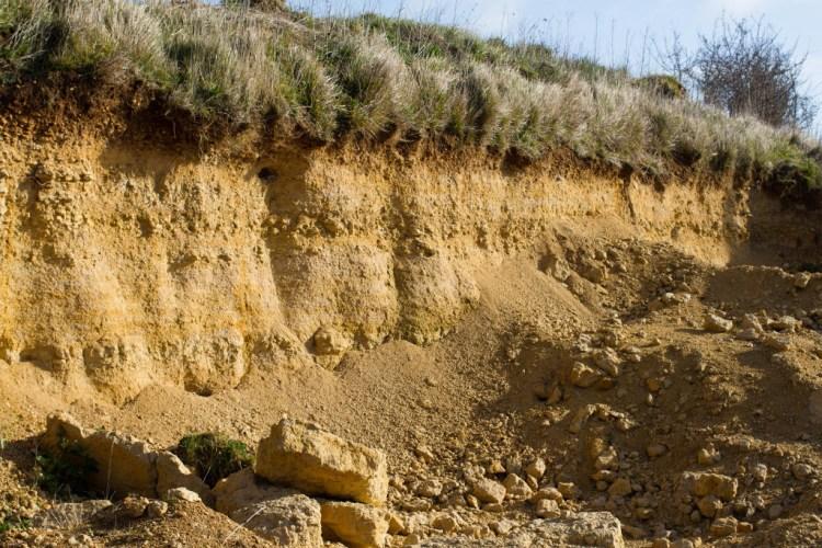 Une veine calcaire ouverte en sablière locale, dans l'Orne.